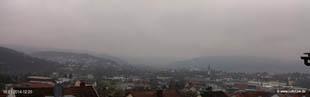 lohr-webcam-16-01-2014-12:20